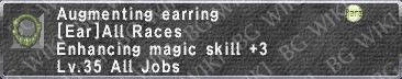 Augment. Earring description.png