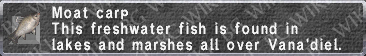 Moat Carp description.png