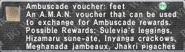 A. Voucher- Feet description.png