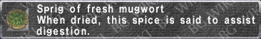 Fresh Mugwort description.png