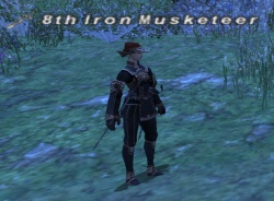 8th Iron Musketeer.jpg