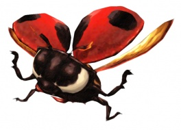 Category-Ladybug.jpg
